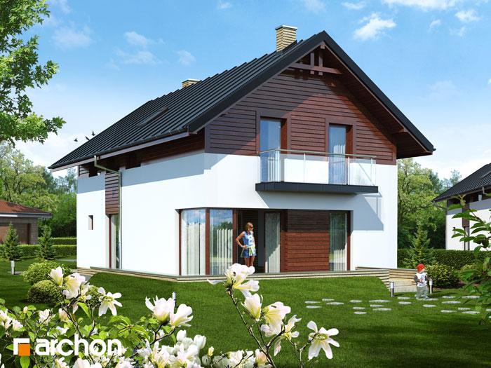 Dom w asarinach - Widok 150