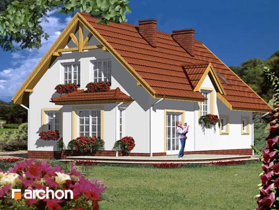 Dom pod jemiołą - Widok 65