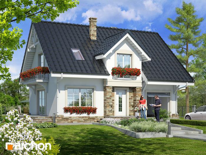 Dom w lucernie 2 - Widok 2