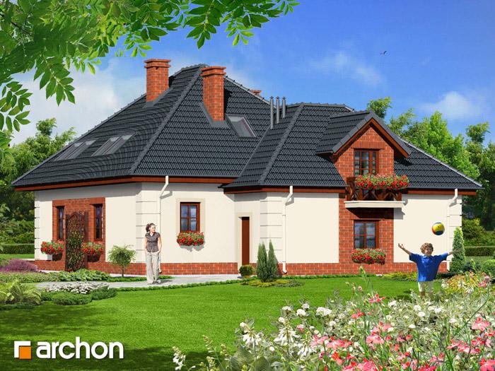 Dom w petuniach - Widok 2