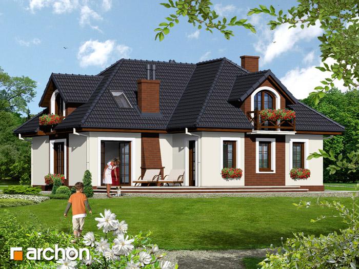 Dom w chabrach - Widok 1