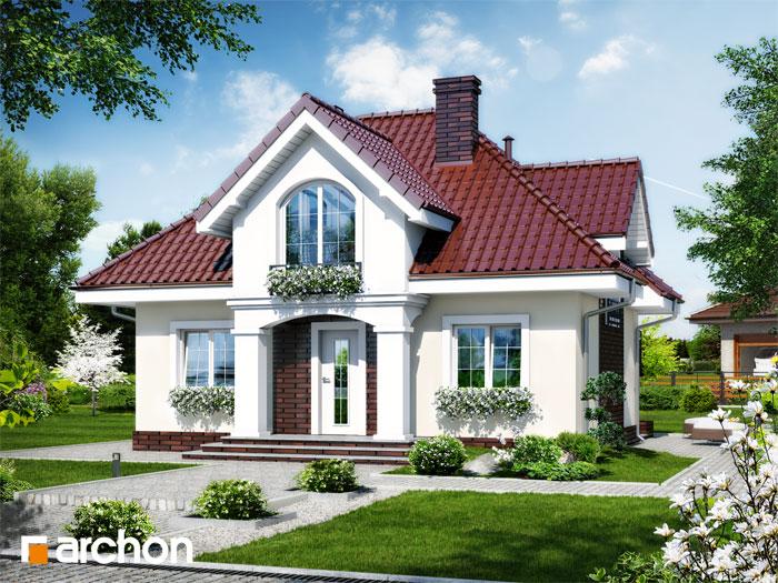 Dom w robiniach - Widok 12