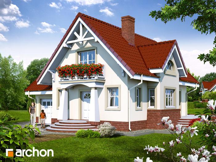 Dom w morelach - Widok 1