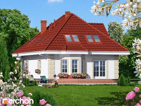 Dom w aksamitkach 3 - Widok 2