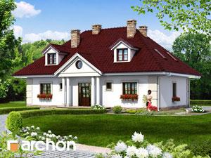 Dom w astrach - Widok 3