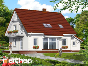Dom w paprociach 3 - Widok 4