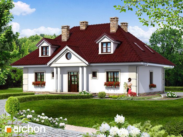 Dom w astrach - Widok 4